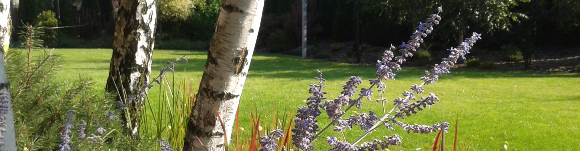 Dom otulony ogrodem